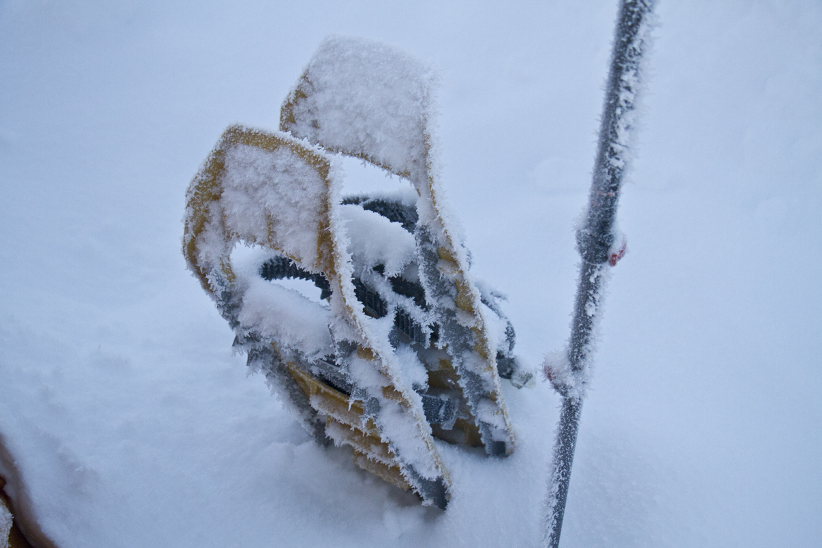 snowshoes in the pacific northwest