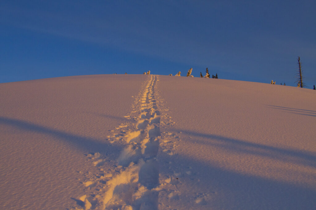 Leave-no-trace winter backpacking